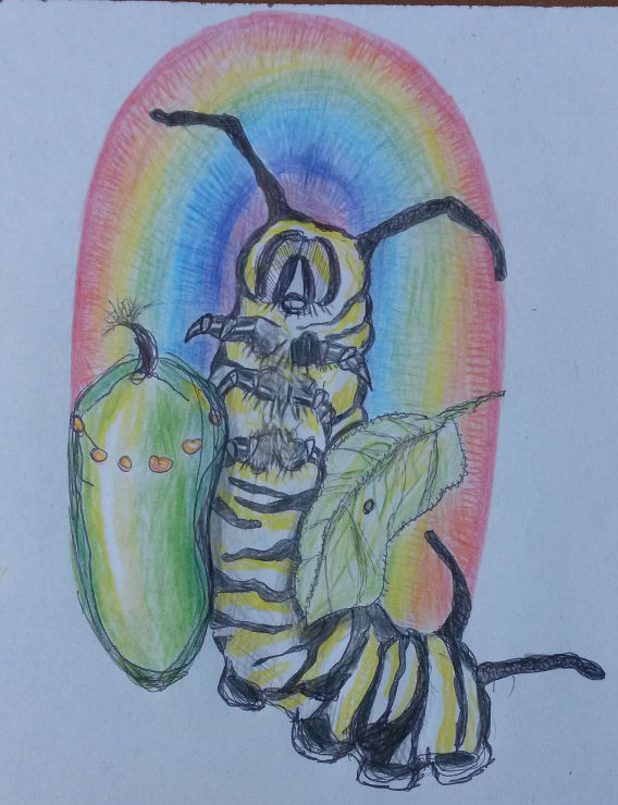 Another great Monarch drawing by Tiffany Wyatt.